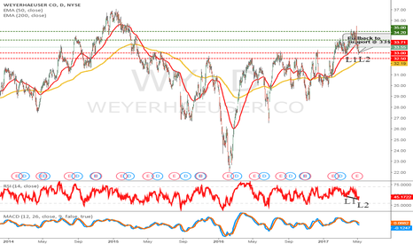 WY: Weyerhaeuser an attractive buy