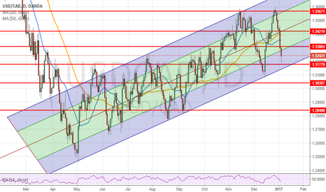 USDCAD: daily chart still relevant....Trendline is Near 1.3160 and intac