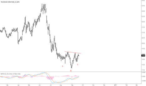 CORN: CORN is forming head and shoulders