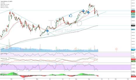 TSLA: Bouncing on trend line