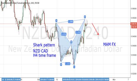 NZDCAD: NZD CAD shark pattern