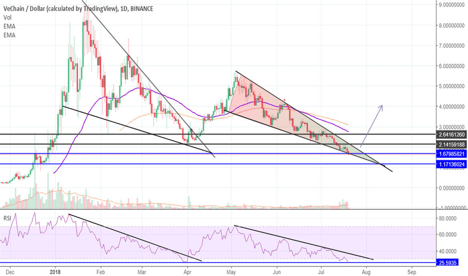 VENUSD: Great potential for Vechain