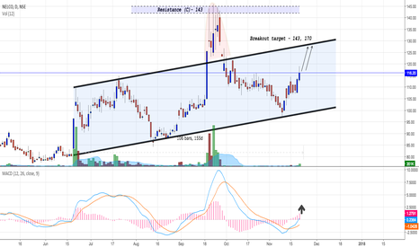NELCO: Nelco : Gearing up (Investment stock)