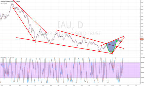 IAU: Long term view of Cup
