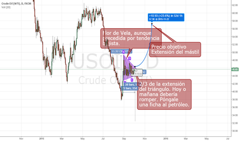 USOIL: FLAG ON OIL PRICE