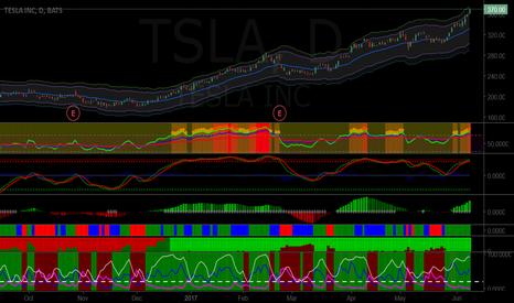 TSLA: Short TSLA at $376