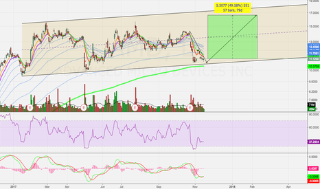 AMD: Possible Bounce From Channel Support