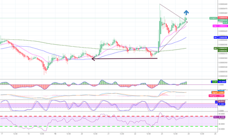 XVGBTC: Verge XVG coming from the woods or going to higher?