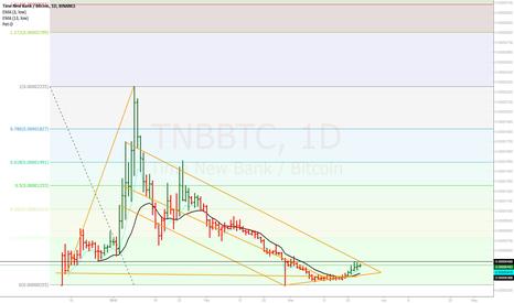 TNBBTC: Times New Bank 2020 Setup