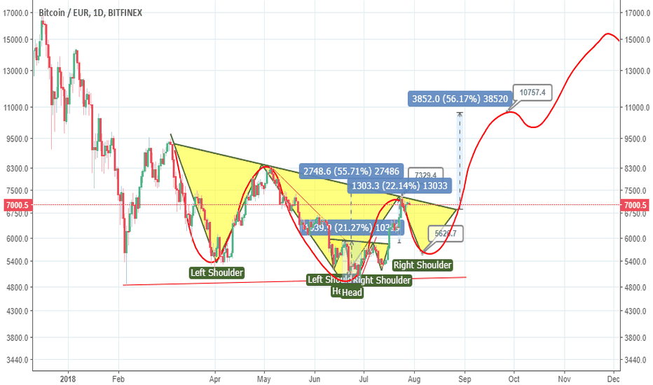BTCEUR: Big H&S on BTCEUR - The bull run will stars after a retracement