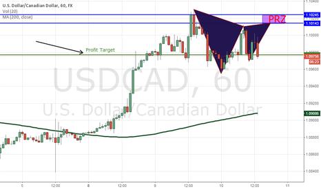 USDCAD: Potential Gartley USD/CAD