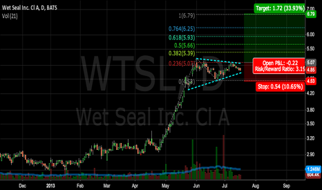WTSL: WTSL Bullish Flag