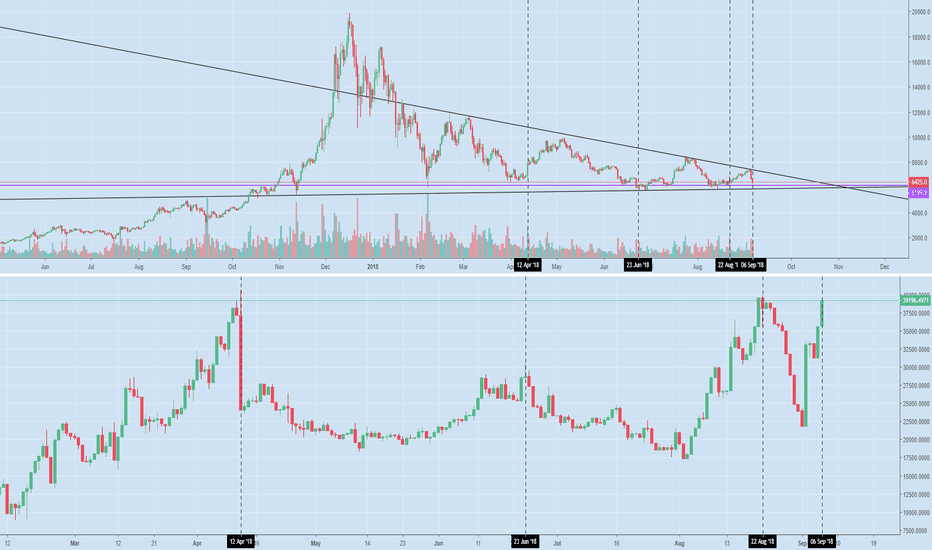 BTCUSD: Shorts Peak at Bottoms, Not Tops