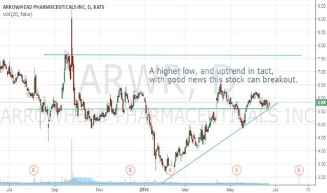 ARWR: Higher Low possible breakout