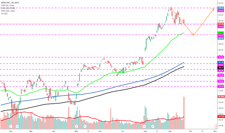 AAPL: Apple heading lower to 210 before bouncing