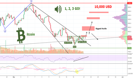 BTCUSD: BITCOIN-Bulls and Bears in 110 Metres Hurdles - Who's Gonna WIN?