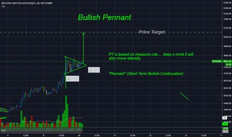 (BTCUSD+XBTUSD+BTCUSD)/3: Keep on truckin'  BTC - Bullish Flag w/ Price Target