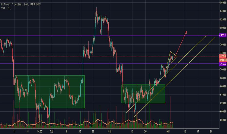 BTCUSD: 2018/9/4 比特币(BTC):三角旗形,继续看涨?