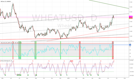 WHEATUSD: Sell the confirmation