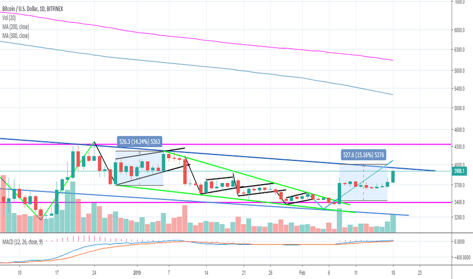 BTCUSD: 2.18.19 Locked and loaded target in sight!