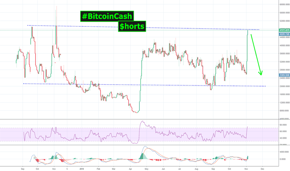 BCHUSDSHORTS: #BitcoinCash SHORTS about to get their HEADS CUT OFF!
