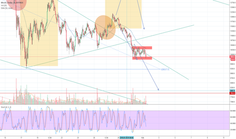 BTCUSD: Bitcoin will hit 8.100$ in 48 hours