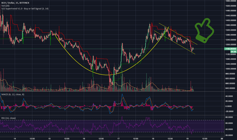 BCHUSD: BCH looking to pull back up?