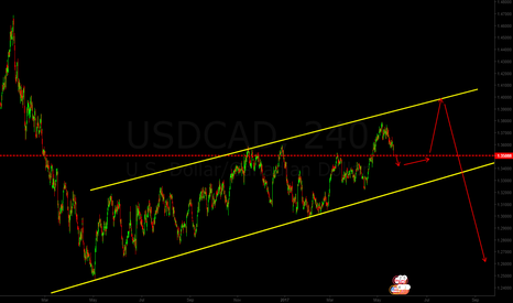 USDCAD: think downwards move of the pair is almost over temporary