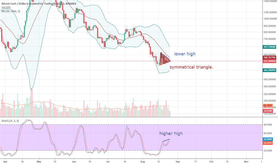 BCCUSD: BCH The Bears Continue