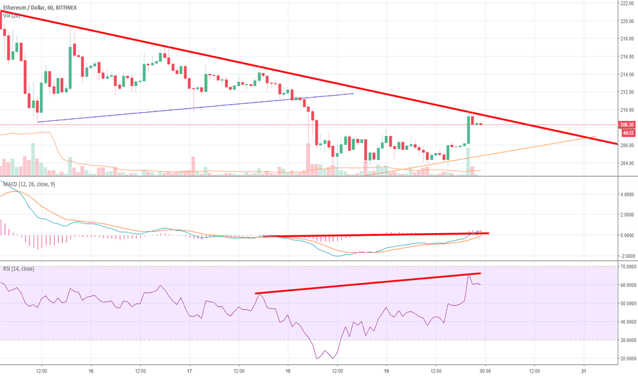 ETHUSD: Hidden Divergence and Where is the Bull Run Money Coming From?