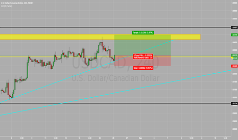 USDCAD: USD/CAD BUY BUY BUY !!!