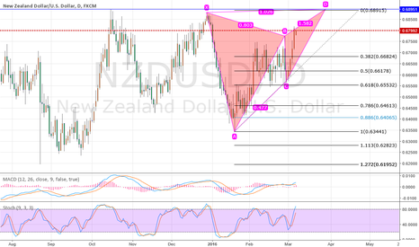 NZDUSD: nzdusd sky map level butterfly pattern