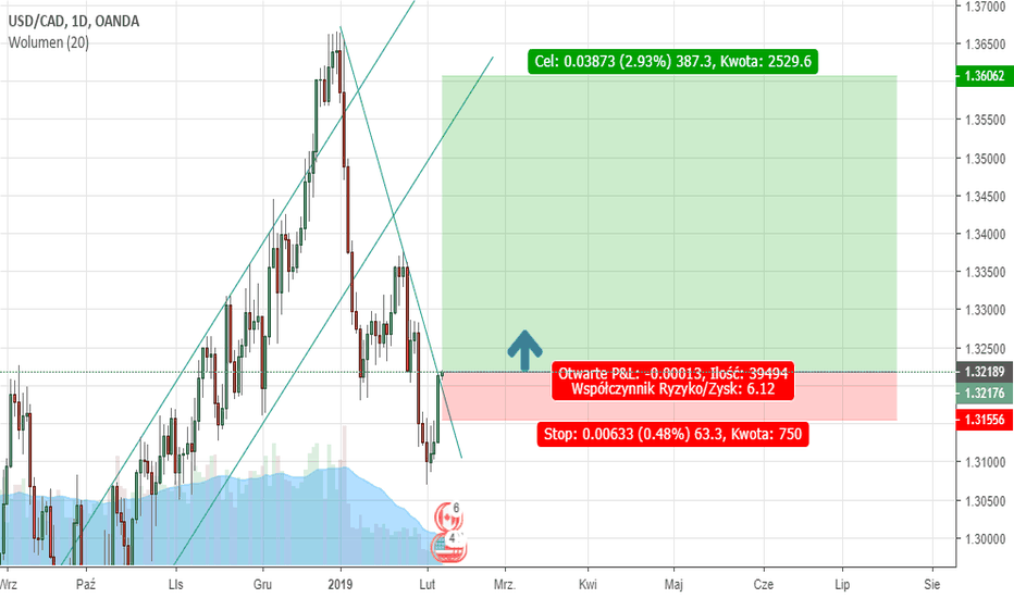 USDCAD: Breaking the trend line. Potential growth. Disputes RR