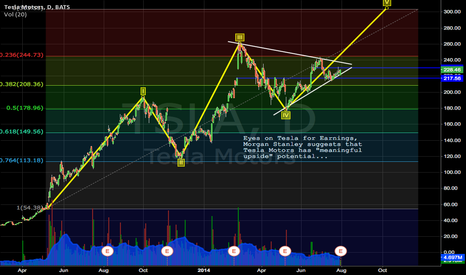TSLA: Medium Term Target @ $244.73 with Elliott Wave Cycle