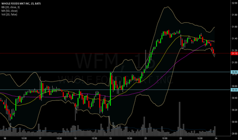 WFM: Buying WHole foods upon pullback
