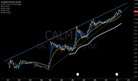 CALM: Longer term just riding the M