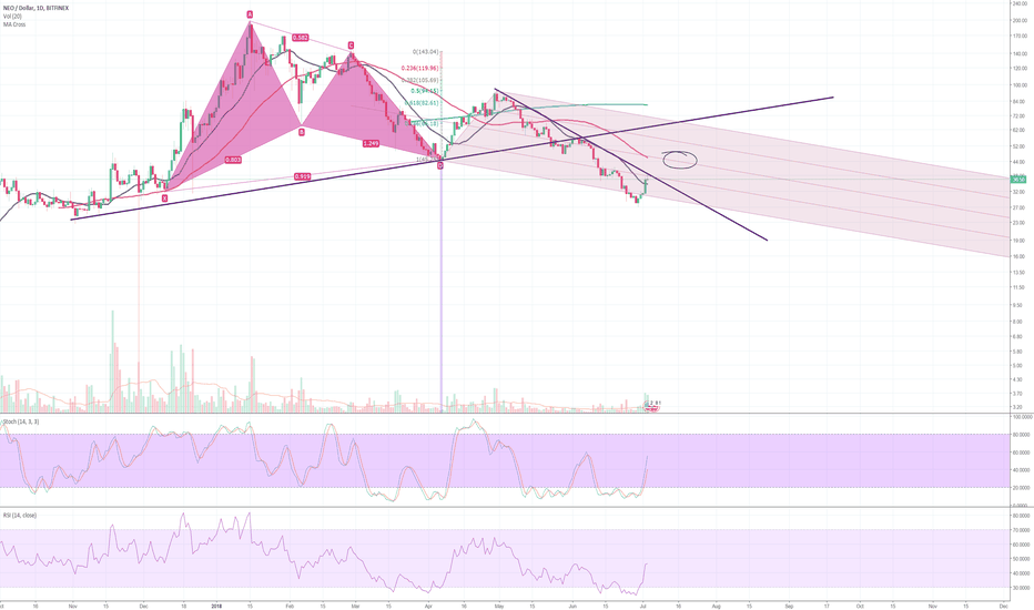 NEOUSD: NEO may have some head room