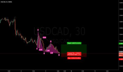USDCAD: USD/CAD m30 bullish black swan