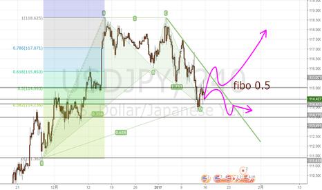 USDJPY: ドル円は週明けどこまであげるか