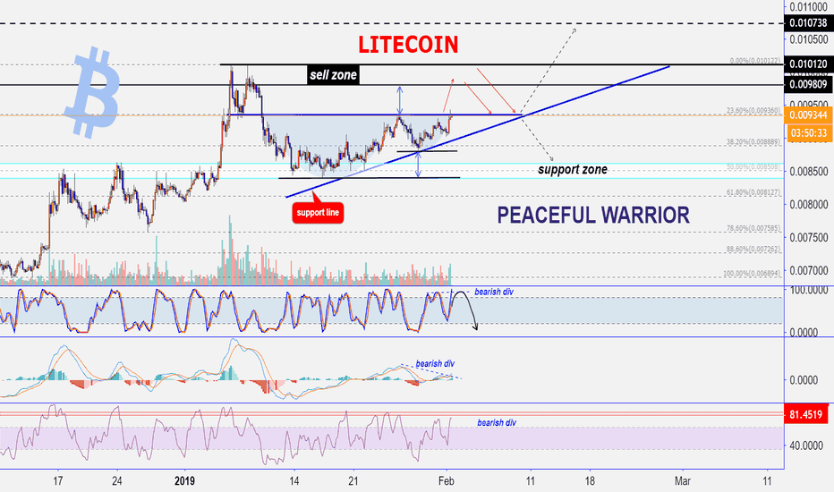 LTCBTC: LITECOIN : Not long will be held