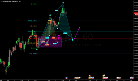 USDCAD: Bigger Cypher forming