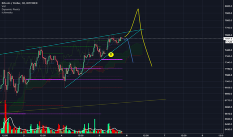 BTCUSD: Seems like this run has found an end