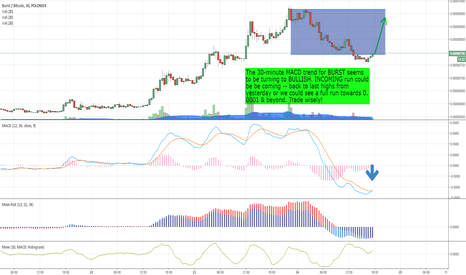 BURSTBTC: BURST - Incoming bullrun coming! Short term MACD is BULLISH!