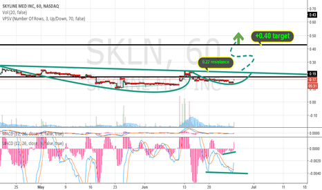 SKLN: skln try to take off