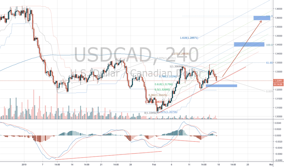 USDCAD: USDCAD Bullish cycle potential continuation