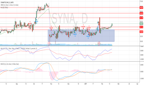 SYNA: Well supported above the blue box accumulation phase.