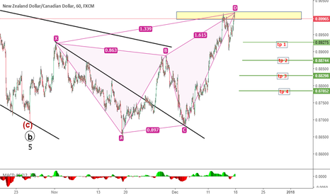 NZDCAD: against trend sell with butterfly pattern