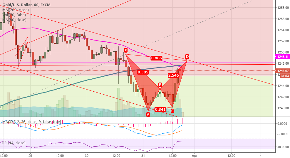 Going down with this Bear Bat Pattern
