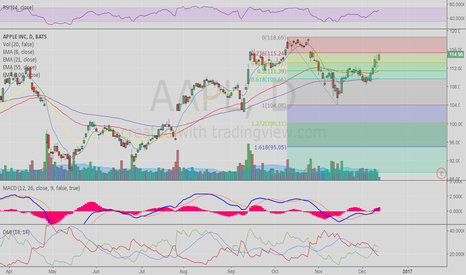 AAPL: Crucial Level @ 115.24