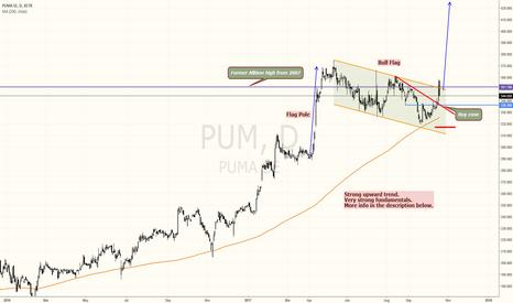 PUM: PUMA textbook bull flag